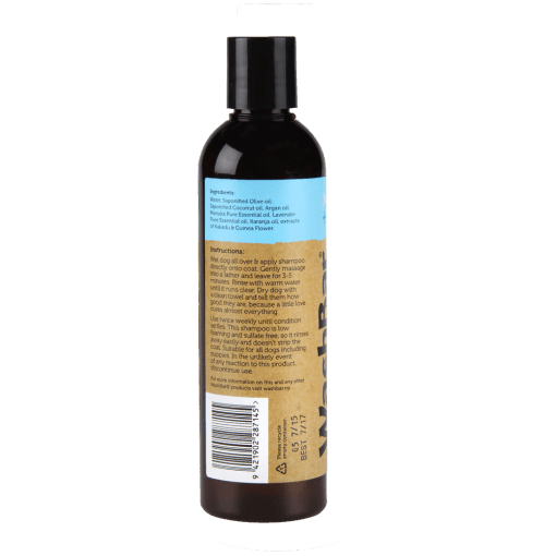 WashBar itchi shampoo back