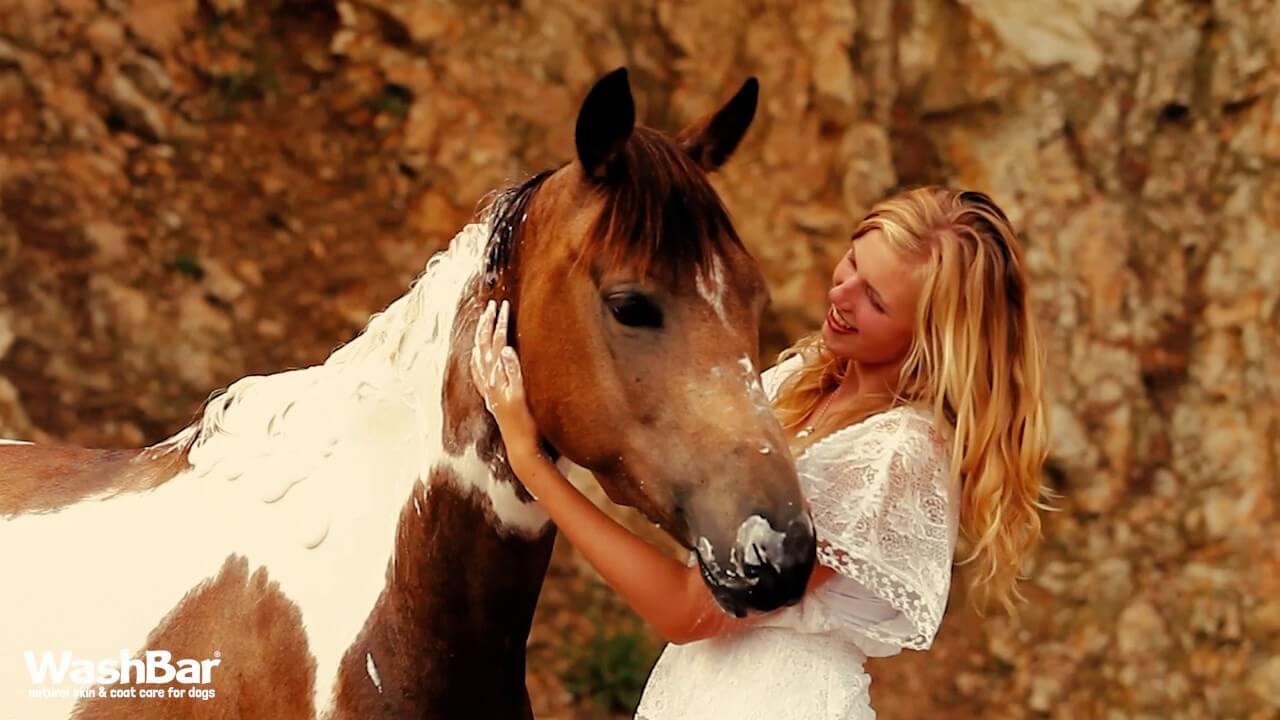 paardHH